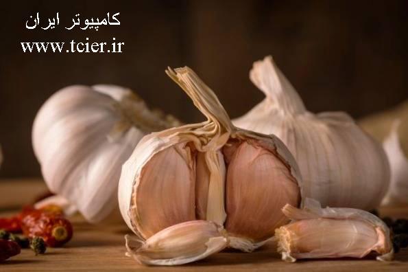 سلامت تغذیه معجزه خوردن روزانه یک حبه سیر با معده خالی