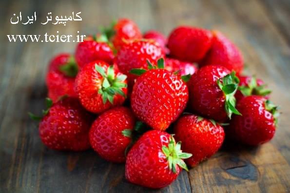مواد غذایی که هر روز باید بخورید