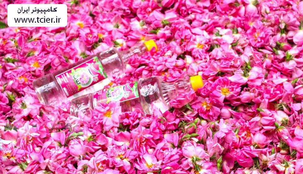 خواص نوشیدنی گیاهی گلاب